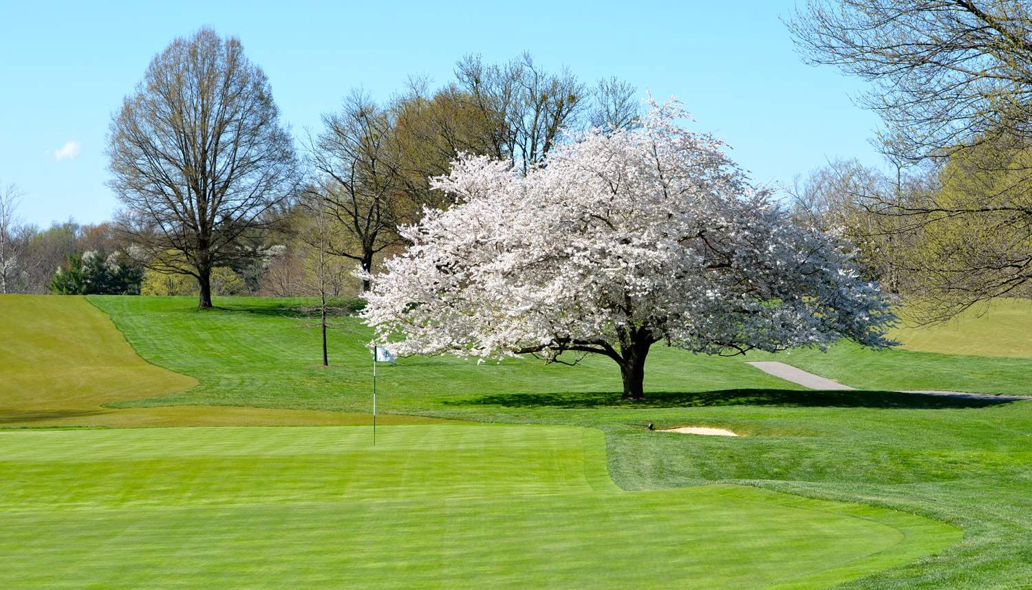 Owl Creek Country Club Louisville Ky Home
